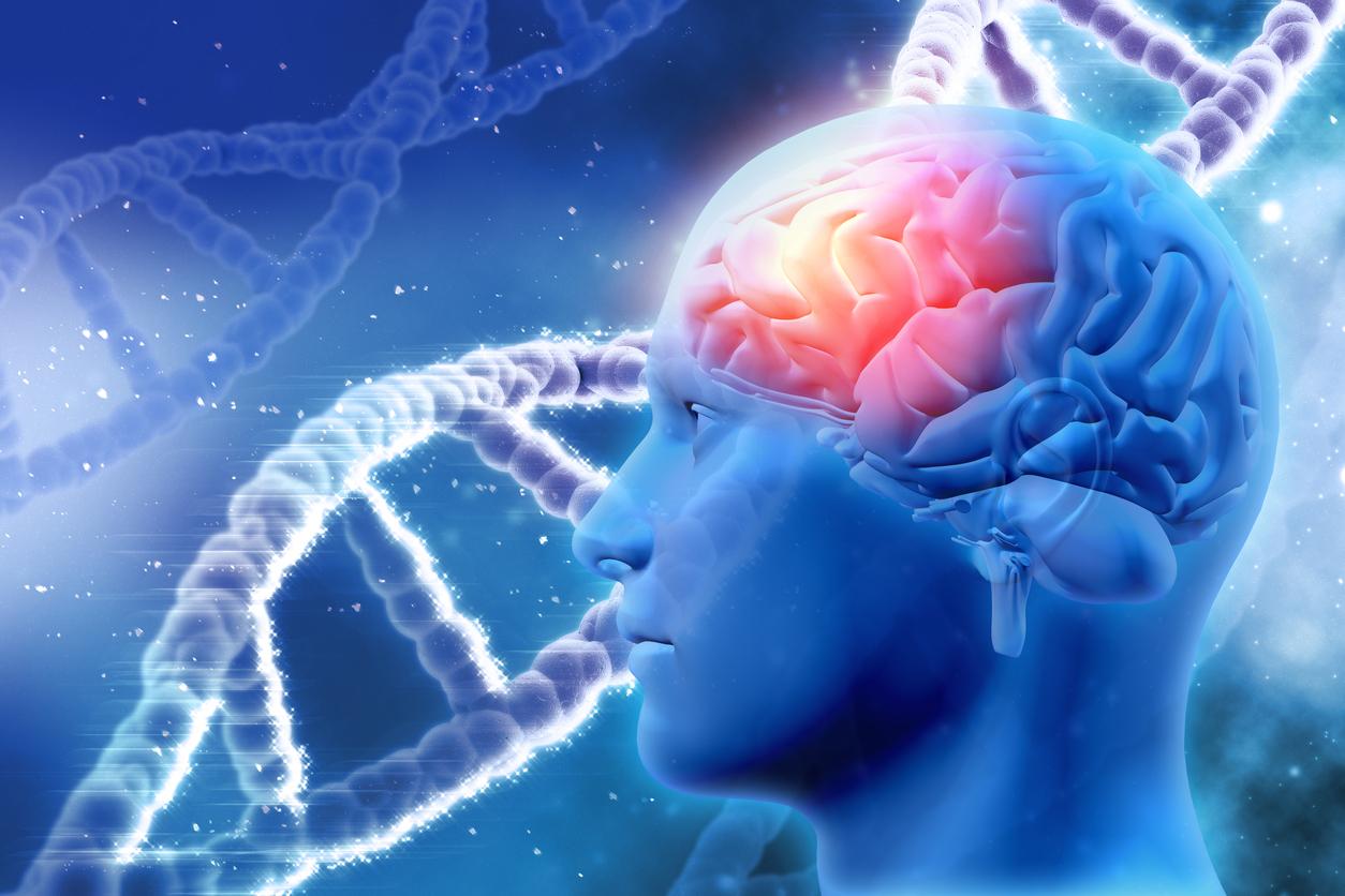 راهنمای کامل برای بیماران مبتلا به بیماری های مغز و اعصاب