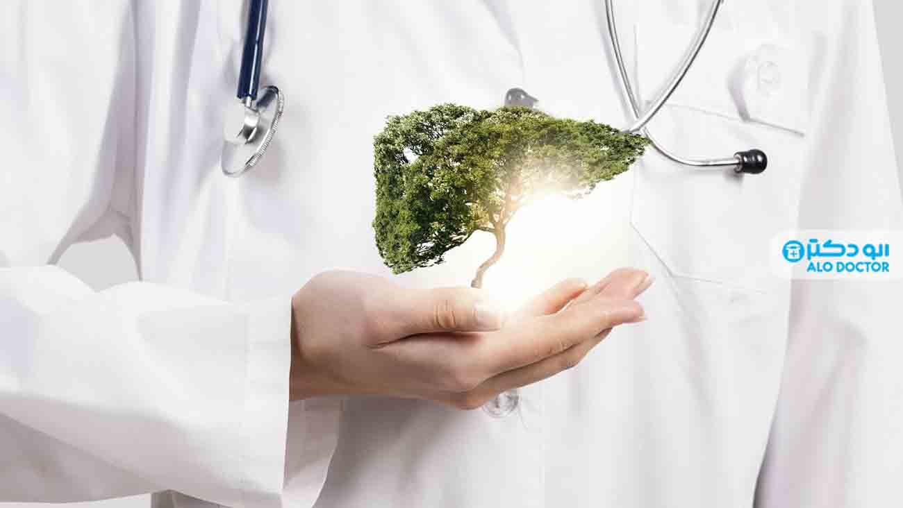 درمانکبدچرببا مواد غذایی طبیعی و موثر +عکس