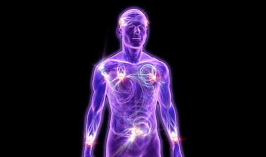 بررسی وضعیت سلامتی ارگان های بدن با دستگاه الکتروارگانوگرافی